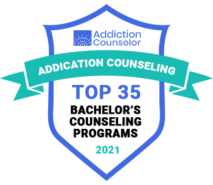 Addictions Counselor Top 35 Bachelor's Counseling Programs 2021